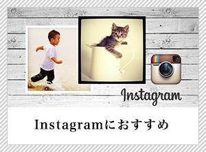 instagramにぴったり写真はがき