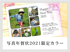 写真年賀状2019限定カラー