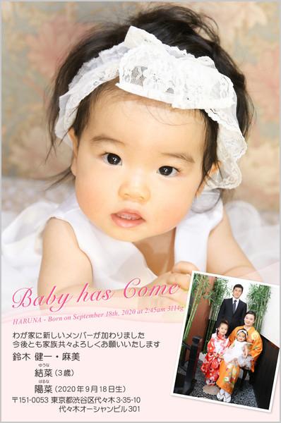 出産・ファミリーはがき No.205 ピンク