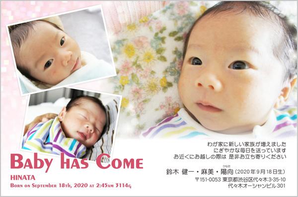 出産・ファミリーはがき No.208 ピンク×ホワイト