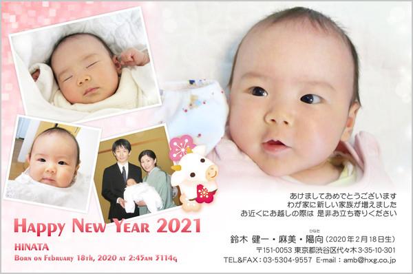 出産報告はがき 写真年賀状2018干支入り No. 208