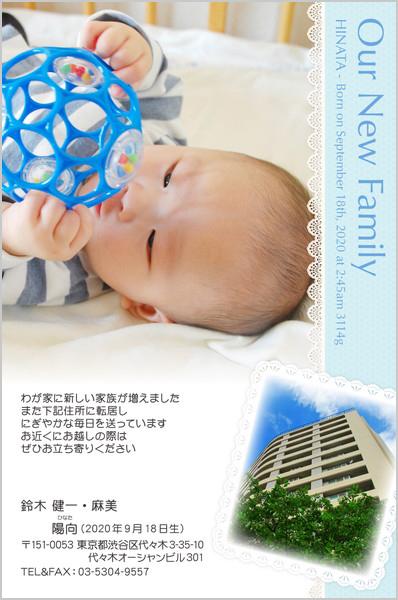 出産・ファミリーはがき No.232 ライトブルー