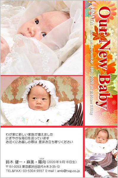 出産・ファミリーはがき No.251 レッド