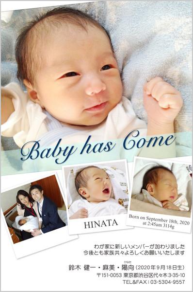 出産・ファミリーはがき No.254 ライトブルー(透明帯の色)