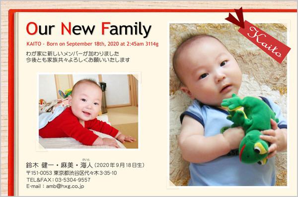 出産・ファミリーはがき No.255 レッド