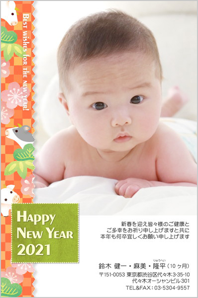 出産報告はがき 写真年賀状2019干支入り No. 256