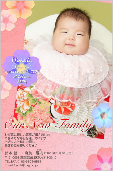 出産・ファミリーはがき No.261 ピンク