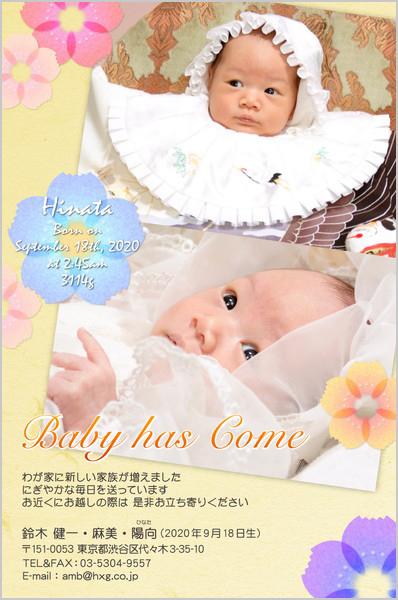 出産・ファミリーはがき No.261 イエロー