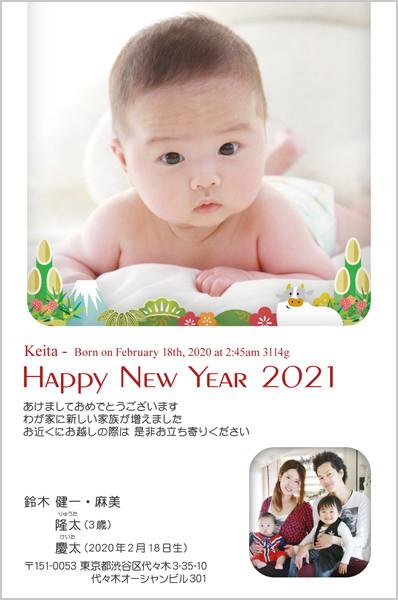 出産報告はがき 写真年賀状2019干支入り No. 266