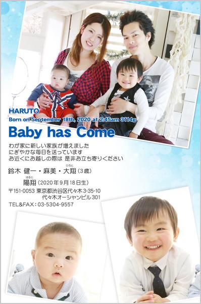 出産・ファミリーはがき No.283 ブルー