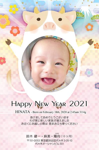 出産報告はがき 写真年賀状2019干支入り No. 402