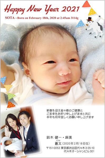 出産報告はがき 写真年賀状2019干支入り No. 419