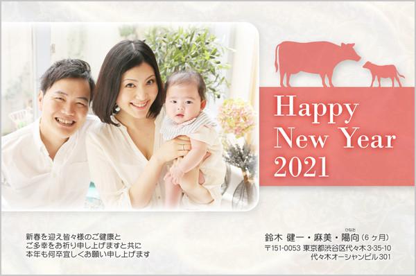 出産報告はがき 写真年賀状2019干支入り No. 421