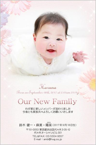 出産・ファミリーはがき No.436 ピンク