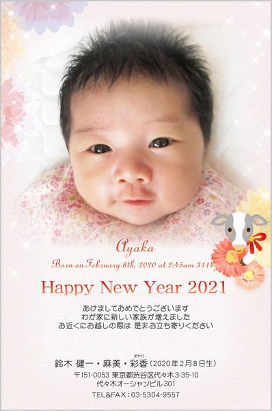 出産・ファミリーはがき No.436 年賀カラー