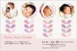 出産・ファミリーはがき No.440