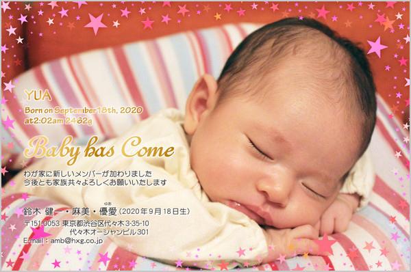 出産・ファミリーはがき No.613 ピンク