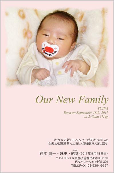 出産報告はがき とっておきの1枚デザイン No. 209