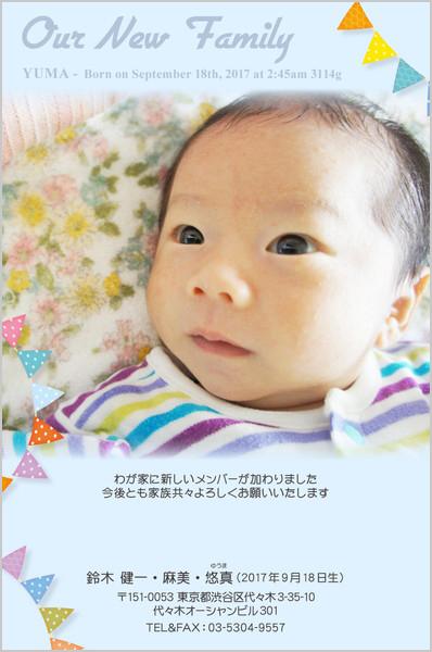 出産報告はがき ポップなデザイン No. 419