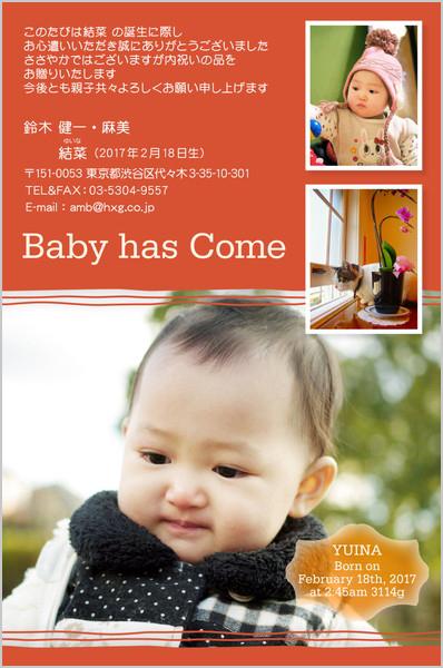 出産報告はがき 内祝いカードにもOK No. 412