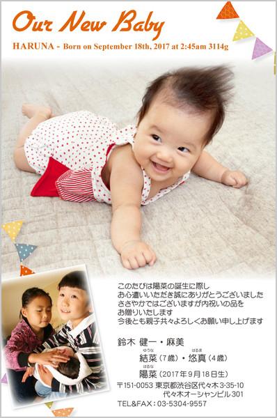 出産報告はがき 内祝いカードにもOK No. 419