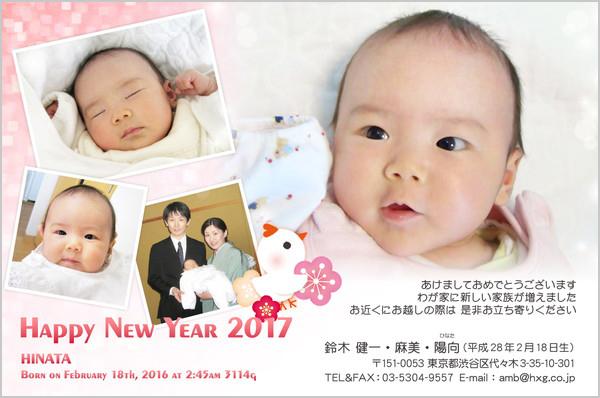 出産報告はがき 写真年賀状2017干支入り No. 208