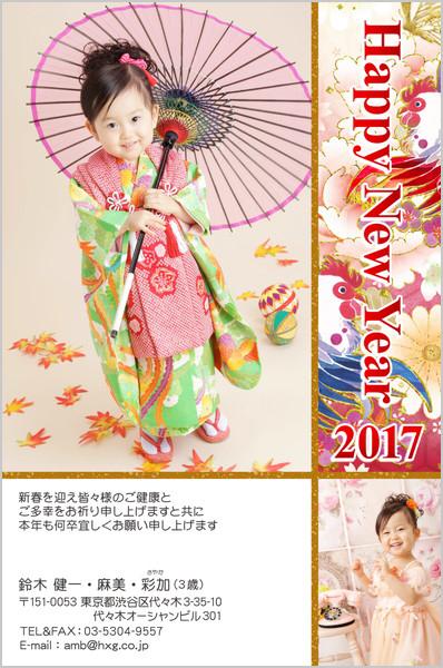 出産報告はがき 写真年賀状2017干支入り No. 251