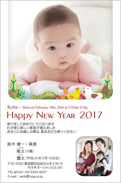 出産報告はがき 写真年賀状2017干支入り No. 266