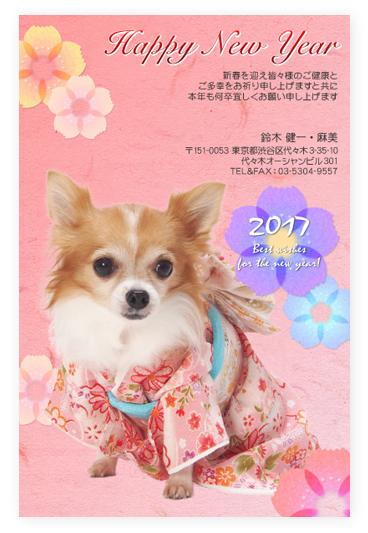 写真年賀状2017 切り抜き ペット わんちゃん