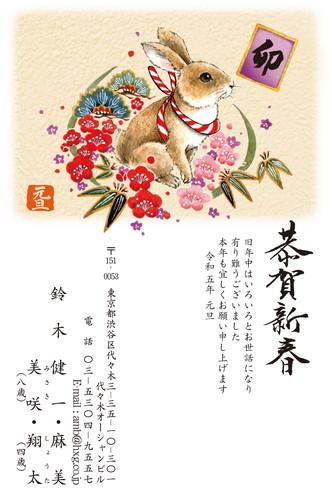 sel20064